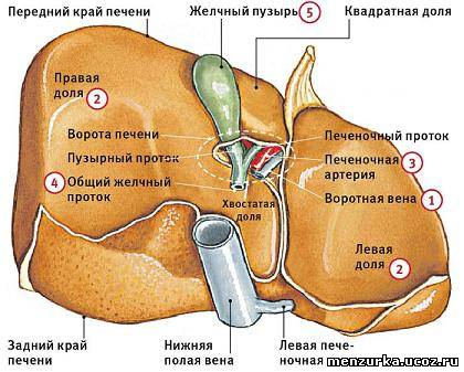 При беременности что пить при головной боли в